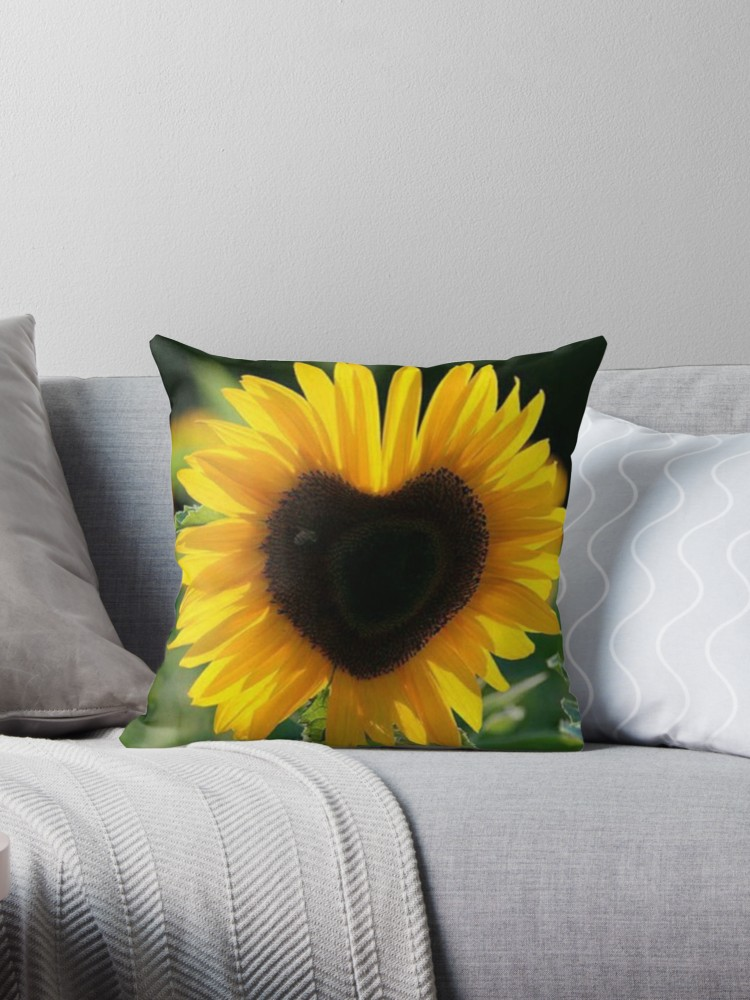 throwpillow,small,750x1000-bg,f8f8f8.u1 (6)
